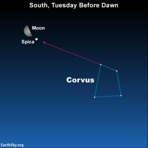 2015-jan-12-text1-corvus-spica-moon-night-sky-chart