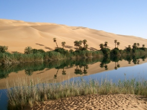 Oasis_in_Libya, Wikimedia.org