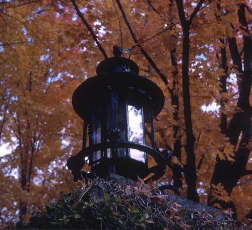 1966 Nov Fall in Cambridge MA2