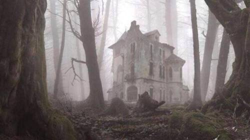 Abandoned-Places-From-Around-The-World-22-An-abandoned-house-in-the-forest