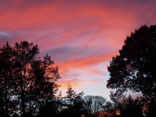 Night Sky Nov 14
