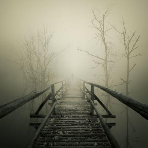 Pierless Bridge - pinterest