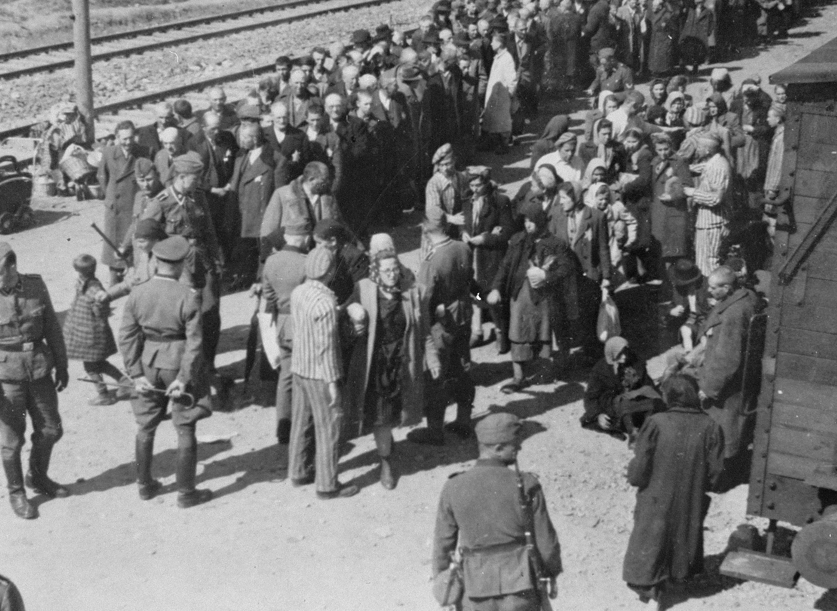pictures from the holocaust - HD1643×1200